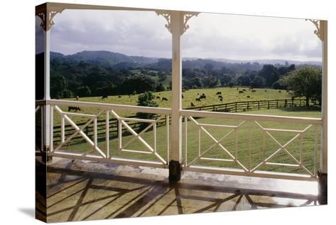 A Glimpse of England', Jamaica--Stretched Canvas Print