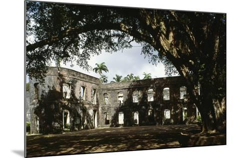 Ruins of Farley Hill House, Barbados--Mounted Photographic Print
