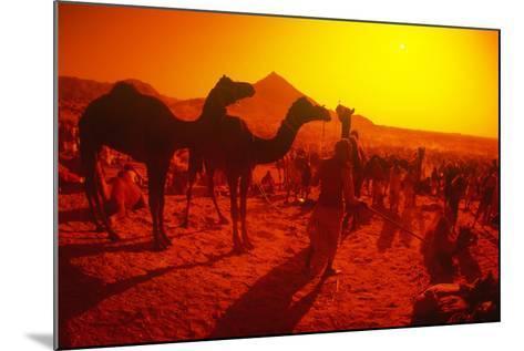 Pushkar Festival, Pushkar, Rajasthan, India--Mounted Photographic Print