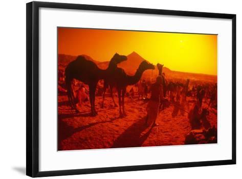 Pushkar Festival, Pushkar, Rajasthan, India--Framed Art Print