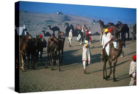 Pushkar Festival, Pushkar, Rajasthan, India--Stretched Canvas Print