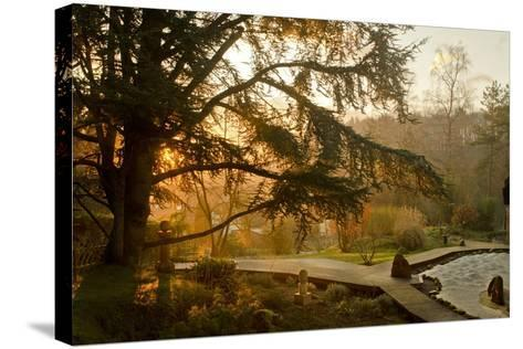 The Garden in the Morning at Zen Temple Ryumonji--Stretched Canvas Print