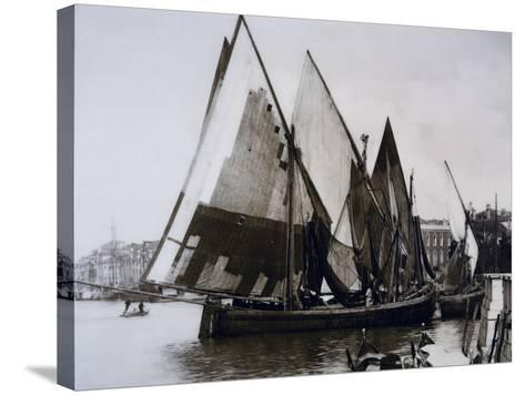 Boats known as Bragozzi, Chioggia, Italy, Early 20th Century--Stretched Canvas Print