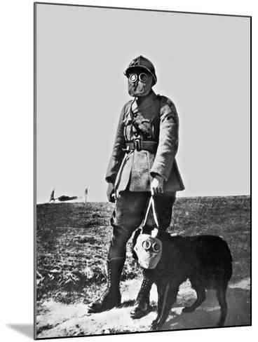 French Soldier and Dog Wearing Gas Masks on the Western Front, 1917--Mounted Photographic Print