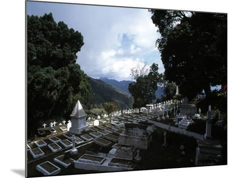Newcastle Military Cemetery, Jamaica--Mounted Photographic Print