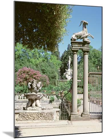 Fountain, Boboli Gardens, Florence--Mounted Photographic Print