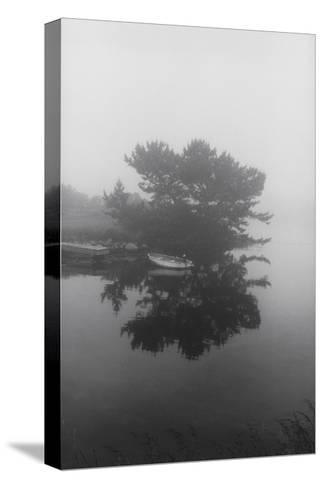 Block Island Boat Trees-Henri Silberman-Stretched Canvas Print