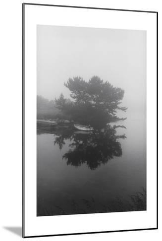 Block Island Boat Trees-Henri Silberman-Mounted Photographic Print
