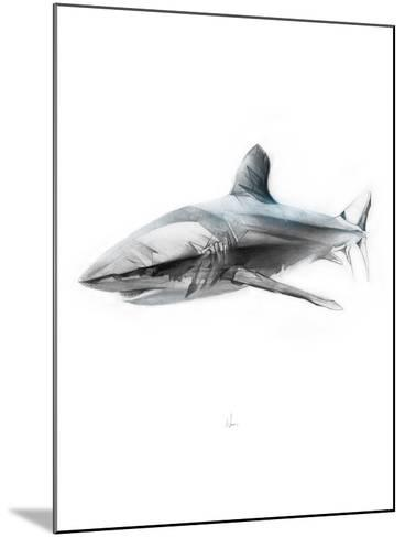 Shark 1-Alexis Marcou-Mounted Art Print