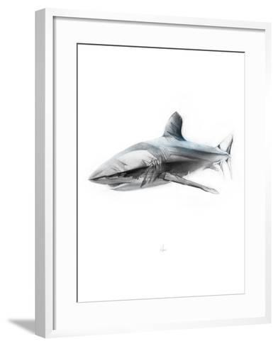 Shark 1-Alexis Marcou-Framed Art Print