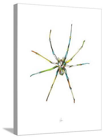 Spider-Alexis Marcou-Stretched Canvas Print