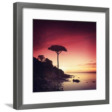 Make it Real for Me-Philippe Sainte-Laudy-Framed Art Print