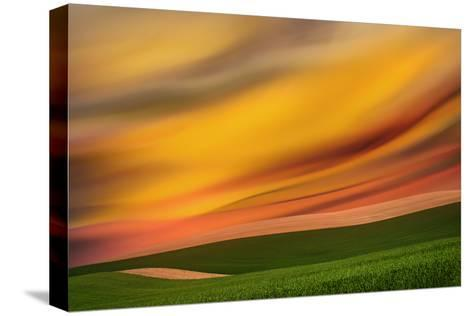 Palouse Abstract 2-Ursula Abresch-Stretched Canvas Print