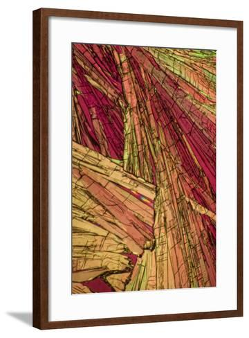 A Photomicrograph, a Picture Taken Through a Microscope, of Salicylic Acid-Cesare Naldi-Framed Art Print