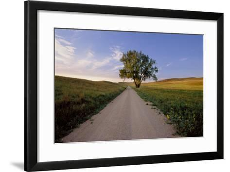 Landscape of a Country Road and Cottonwood Tree-Michael Forsberg-Framed Art Print