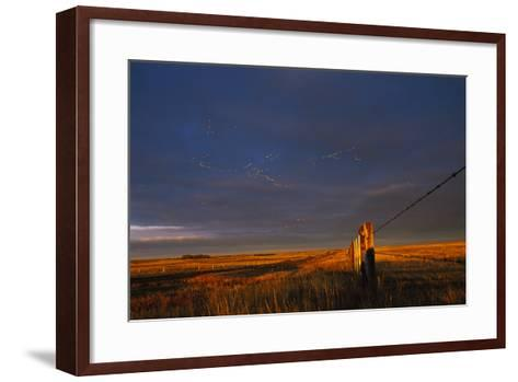 Lesser Snow Geese Fly High Above the Plains-Michael Forsberg-Framed Art Print