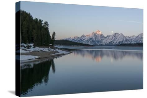 The Moon Above the Grand Tetons at Sunrise-Barrett Hedges-Stretched Canvas Print