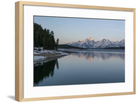 The Moon Above the Grand Tetons at Sunrise-Barrett Hedges-Framed Art Print