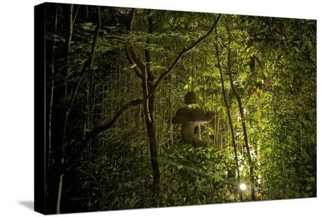 Bird House at a Local Garden in Kyoto-Kike Calvo-Stretched Canvas Print