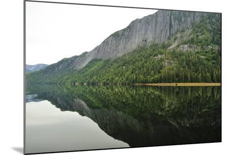 Tall Cliffs and Conifer Trees on the Shore of Rudyerd Bay-Jonathan Kingston-Mounted Photographic Print