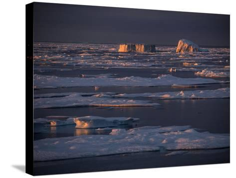 Icebergs Late Afternoon Sunlight-Jay Dickman-Stretched Canvas Print