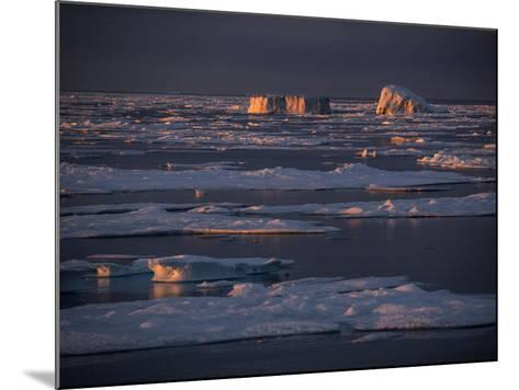 Icebergs Late Afternoon Sunlight-Jay Dickman-Mounted Photographic Print