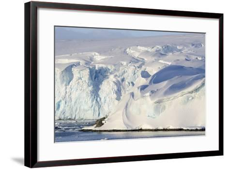 Glacier Next to the American Research and Science Base of Palmer Station on Anvers Island-Rich Reid-Framed Art Print