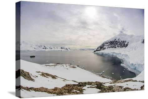 Wide Angle of a Ship and Glacier at Neko Harbor on the Antarctic Peninsula-Rich Reid-Stretched Canvas Print