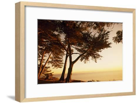 Sunset from Cliffs Above the Pacific Ocean at the Douglas Family Preserve-Macduff Everton-Framed Art Print