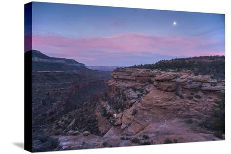 Sunrise at Bedrock Canyon Below Powell Plateau and the North Rim of Grand Canyon National Park-Bill Hatcher-Stretched Canvas Print