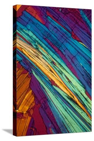 A Photomicrograph, a Picture Taken Through a Microscope, of Benzoic Acid-Cesare Naldi-Stretched Canvas Print