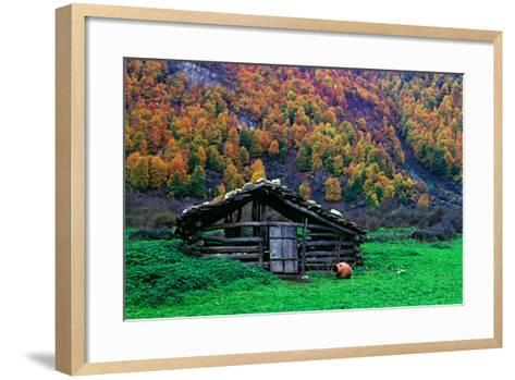A Wooden Hut in an Autumn Landscape of Colorful Maple Trees in the Dohezar Forest-Babak Tafreshi-Framed Art Print