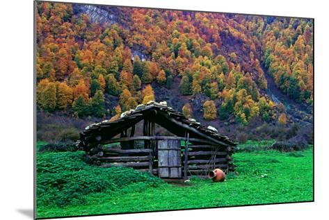 A Wooden Hut in an Autumn Landscape of Colorful Maple Trees in the Dohezar Forest-Babak Tafreshi-Mounted Photographic Print