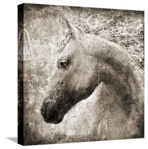 Majestic Horse-Eric Yang-Stretched Canvas Print