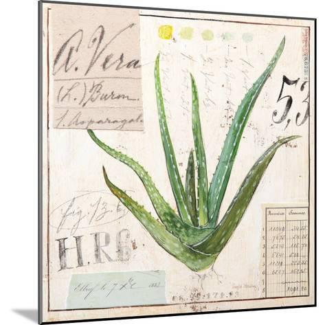 Aloe Vera…Sketchbook-Angela Staehling-Mounted Art Print
