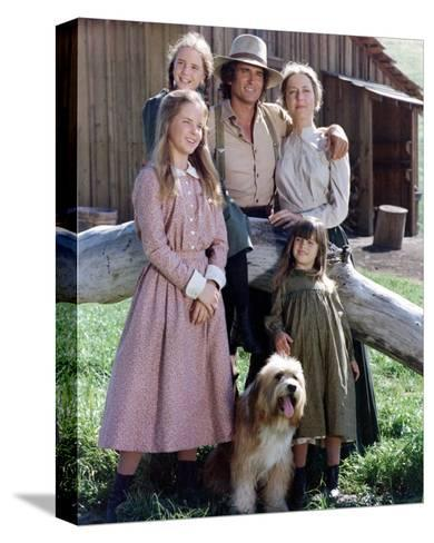 Little House on the Prairie--Stretched Canvas Print