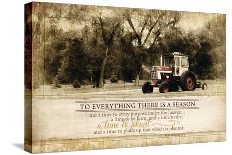 Everything There Is a Season-Jennifer Pugh-Stretched Canvas Print
