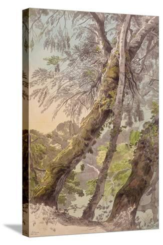 Trees Overhanging Water, 1800-Francis Towne-Stretched Canvas Print