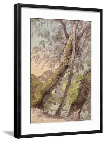 Trees Overhanging Water, 1800-Francis Towne-Framed Art Print