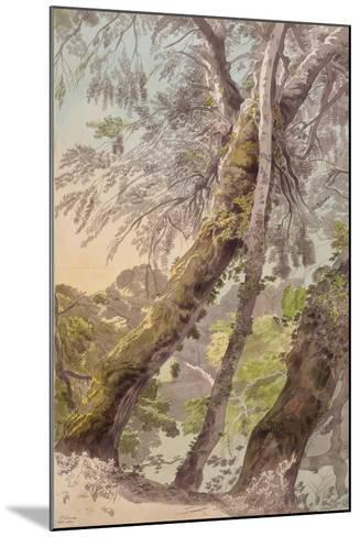 Trees Overhanging Water, 1800-Francis Towne-Mounted Giclee Print