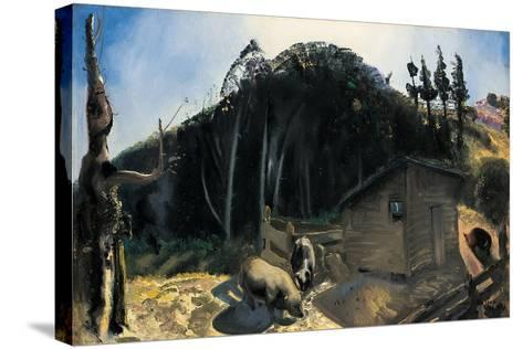 Three Pigs and a Mountain, C.1922-George Wesley Bellows-Stretched Canvas Print