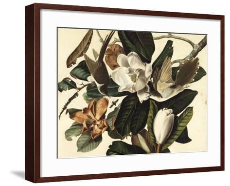 Black-Billed Cuckoo, 1822-John James Audubon-Framed Art Print