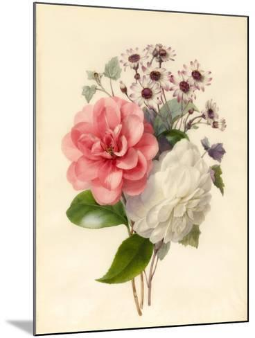 Spray of Three Flowers-Marie Anne-Mounted Giclee Print