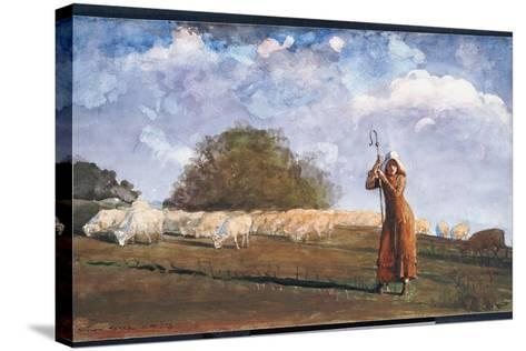 The Young Shepherdess, 1878-Winslow Homer-Stretched Canvas Print