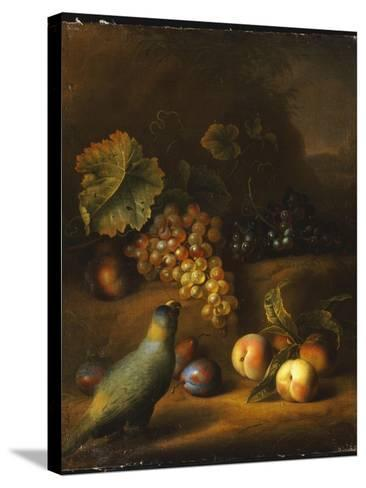 A Parrot with Grapes, Peaches and Plums in a Landscape-Tobias Stranover-Stretched Canvas Print