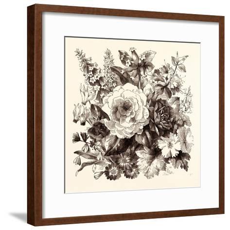 March. Epacris Delicata E. Purpurescens. Cyclamen Persicum. Scilla Praecox--Framed Art Print