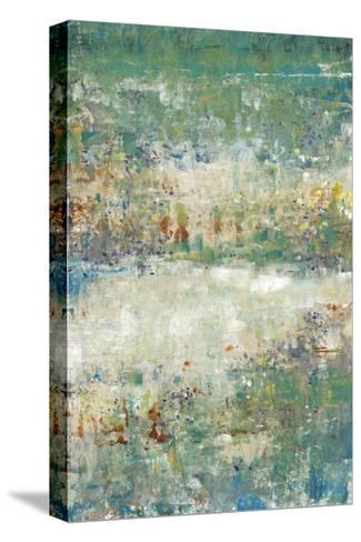 Flower Path I-Tim OToole-Stretched Canvas Print