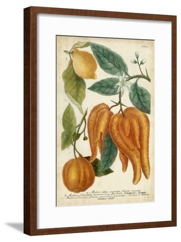 Exotic Citrus I-Weinmann-Framed Art Print