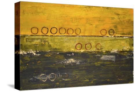 Aquarium II-Natalie Avondet-Stretched Canvas Print