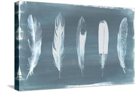 Feathers on Dusty Teal I-Grace Popp-Stretched Canvas Print